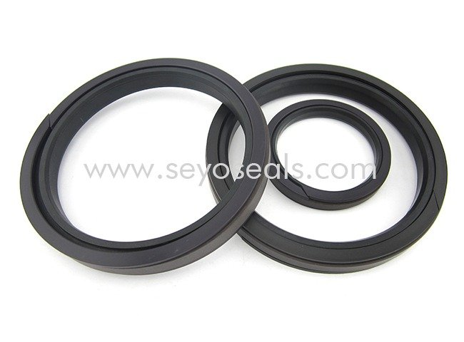 SPGW 5pc piston seal